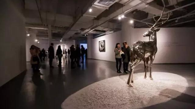 """蔡志松—何汶玦双个展仪式与日""""一场城市艺术梦想构建"""
