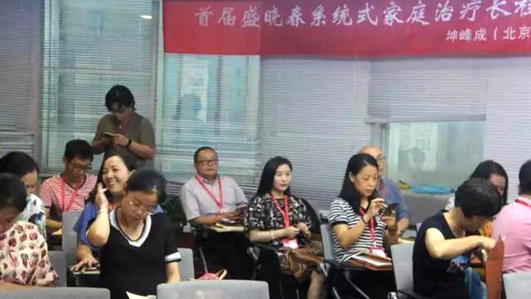 超值丨盛晓春系统式家庭治疗纯技术培训工作坊