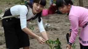 """【3月11日17日植树节】""""小小绿化师""""亲子植树活动"""